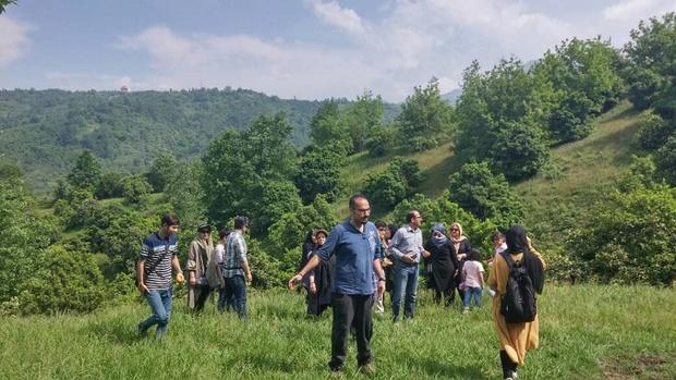 عصای کاشف السلطنه در دست گردشگران چای