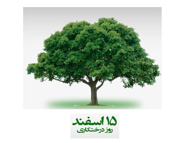 نجات زمین در گرو نجات راست قامتان سبز