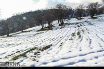 پیشبینی بارش خفیف برف برای ارتفاعات البرز