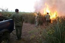 آتش در پارک ملی بوجاق مهار شد  ابراز نگرانی از آتشسوزیهای تعمدی