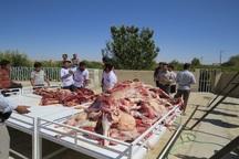 برگزاری سنت توزیع گوشت قربانی میان نیازمندان برای سیزدهمین سال در ابرکوه