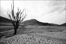 بارندگی در خراسان شمالی 54درصد کاهش یافت