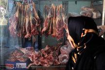 فعالشدن کشتارگاه زاگرس در کاهش قیمت گوشت قرمز تاثیرگذار شد