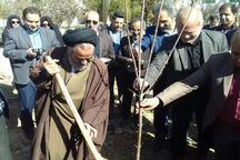 1000 نهال به یاد شهدای  خمین کاشته شد