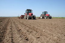 111هزار هکتار مزرعه دیم درکهگیلویه و بویراحمد چشم انتظار باران