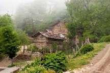استقرار یکهزار و 300 روستای مازندران در داخل جنگل