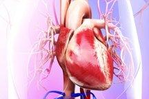 ایست قلبی و ضرورت انجام عملیات احیا در دقایق ابتدایی