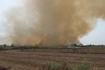 آتش سوزی در بیشه روستای مهدی آباد شوشتر مهار شد