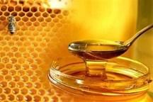 شیرینی تولید عسل به کام بهره برداران خمین نیست