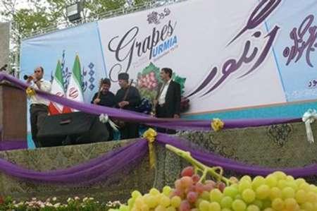 شهردار: پنجمین جشنواره انگور ارومیه نیمه دوم شهریورماه جاری برگزار می شود