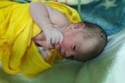 نوزاد دختر، نخستین متولد سال 98 استان اردبیل بود