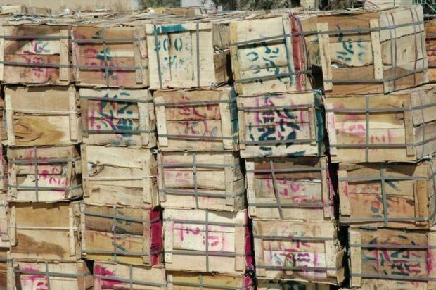 بیش از 10 تن انبه قاچاق در مرز جکیگور کشف شد