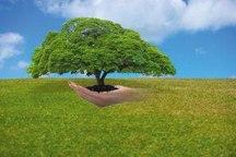 اعلام آمادگی شهروندان گرگانی برای همکاری با متهم محیط زیستی