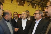 سرانه ورزشی فارس در دولت تدبیر و امید 2.2 برابر شد