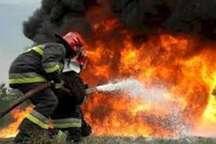 آتش سوزی در پارک خانواده کرج مهار شد
