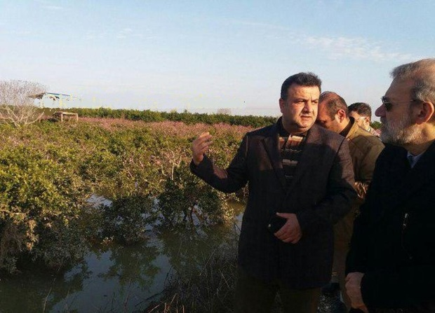 رئیس مجلس شورای اسلامی از مناطق سیل زده مازندران بازدید کرد