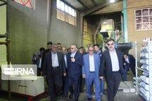 وزیر جهاد کشاورزی: فضای گلخانهای کشور ۲۵ درصد افزایش یافت