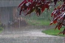 باران در 12 شهرستان خراسان رضوی بارید