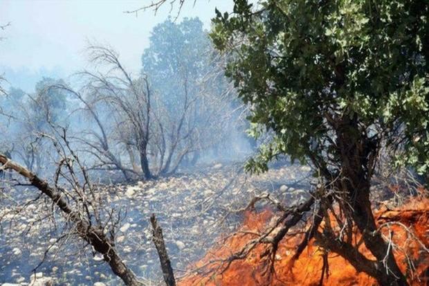 بخشی از پارک ملی کرخه آتش گرفت