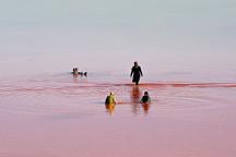 نجات «دریاچه ارومیه» از مرگ