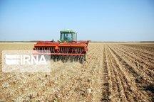 کشاورزی حفاظتی کردستان ۳۰ میلیارد ریال اعتبار گرفت