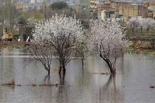 بارش های سمیرم کاهش 46 درصد کاهش یافت