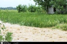 سیل حدود 80 میلیارد ریال به شیروان خسارت زد