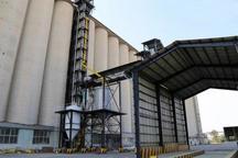 6 مرکز خرید گندم و کلزا در البرز تعیین شد