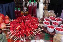 جشنوارهها به توسعه صنعت گردشگری مهریز کمک میکند