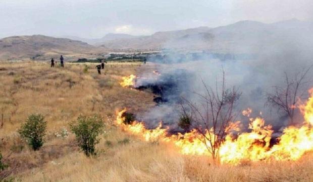 آتش سوزی در تپههای شمال شرق تهران مهار شد