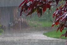 بارندگی های زنجان 130 درصد افزایش یافت