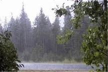 وزش باد شدید با سرعت ۷۴ کیلومتر بر ساعت در گلستان