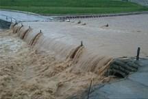 سیل در بجستان 24 میلیارد ریال خسارت وارد کرد