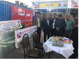 تلاش کمیته امداد استان مرکزی در ایجاد اشتغال قابل تقدیر است