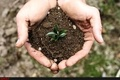فرسایش سالانه 16 تن خاک در هکتار در مازندران