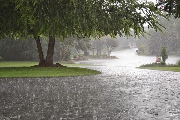 142 میلیمتر بارندگی در ایستگاه باران سنجی منشاد مهریز ثبت شد