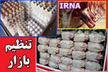 173 تن مرغ در رودبار جنوب توزیع شد