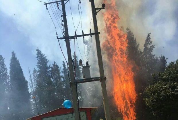 آتش سوزی بخشی از جنگل ناهارخوران گرگان مهار شد