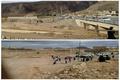 پرآب شدن یکی قدیمیترین رودخانه های  یزد پس از چند سال خشکی+فیلم