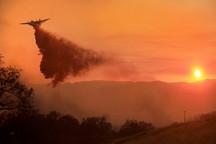 کالیفرنیا همچنان در آتش می سوزد+ تصاویر