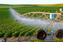 96 پروژه کشاورزی در استان زنجان به بهرهبرداری میرسد