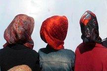 تلاش گسترده تاجیکستان برای ممنوعیت حجاب