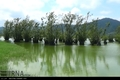 معرفی آستارا به عنوان شهر تالابی به سازمان حفاظت محیط زیست