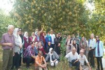 تور 60 نفره تهرانی از جاذبه های گردشگری نیکشهر دیدن کردند