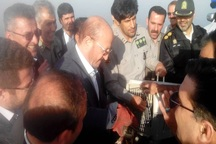 استاندار قزوین پنج پرنده را در تالاب الله آباد رهاسازی کرد
