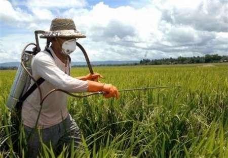 5 تن سموم کشاورزی برای مزارع خراسان شمالی توزیع شد