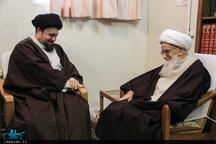 سید حسن خمینی با آیت الله العظمی صافی گلپایگانی دیدار کرد
