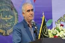 خودکفایی تولید گندم در دولت های اصلاحات و تدبیر و امید موفقیتی کم نظیر است