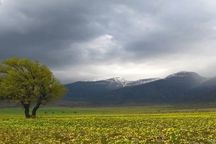 رخنمایی پاییز با کاهش 10 درجهای دما و بارش برف و باران در سمنان