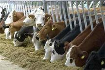 42 میلیارد ریال تسهیلات به کشاورزان آران و بیدگلی پرداخت شده است